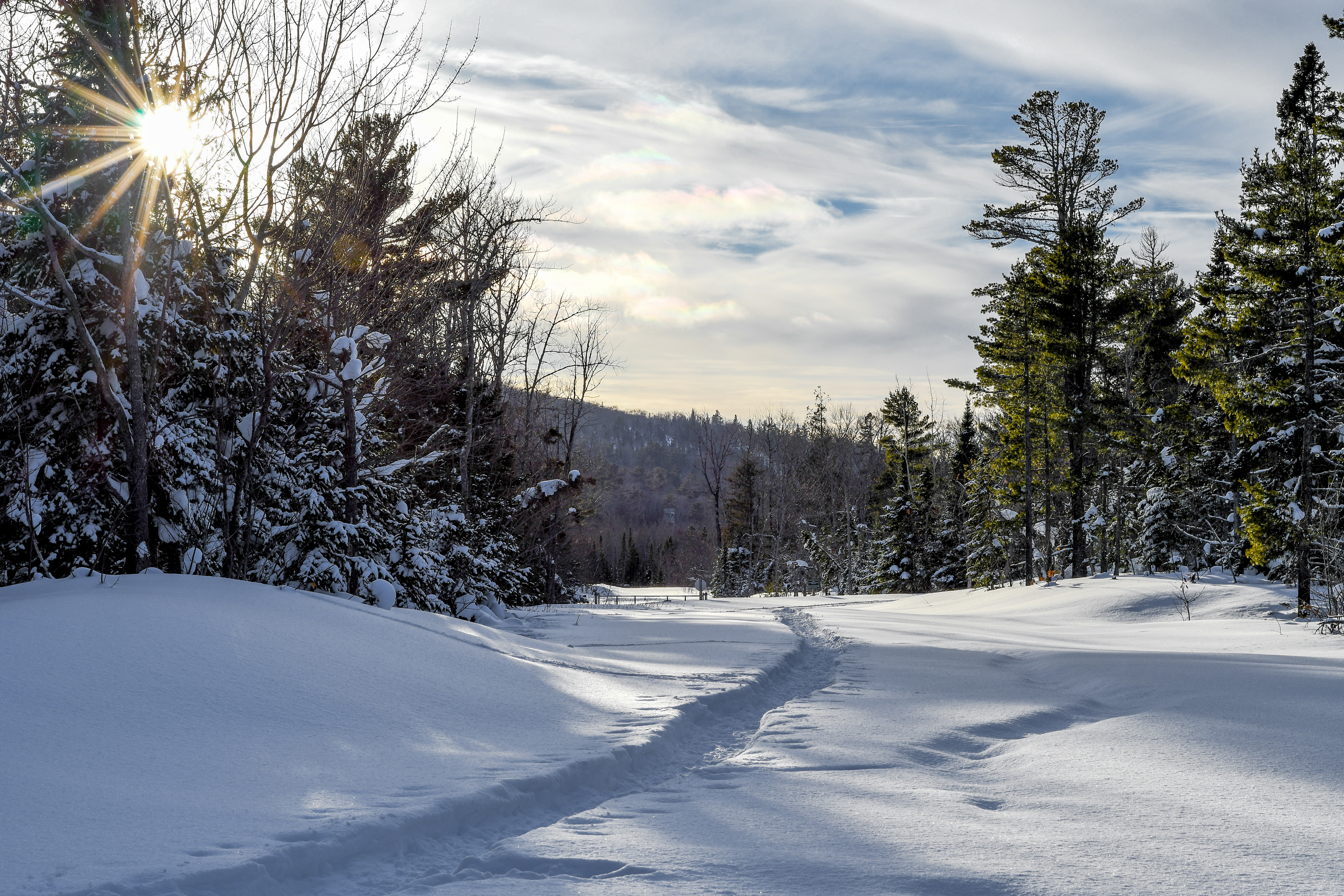 Snowshoe tracks leading through woods on trail to shore.